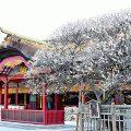 「応天の門」で平安の京にタイムスリップ